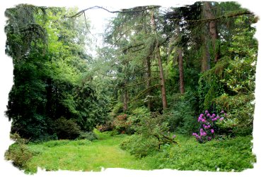 Anne's Grove gardens, Cork
