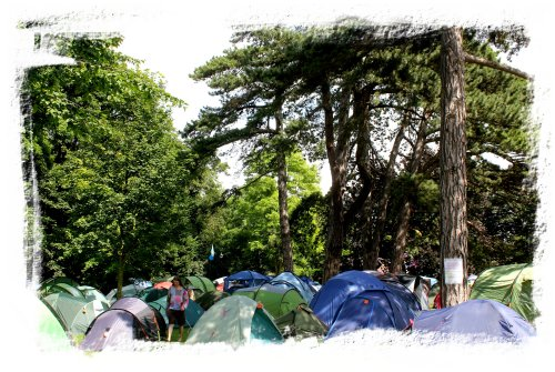 Cambridge Folk Festival camping under the trees July 2012 ©vcsinden2012