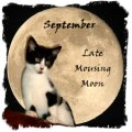 September Moon Kat