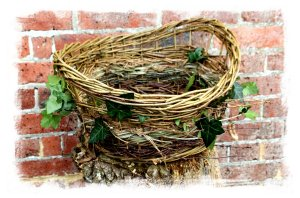Muddypond's hedgerow basket made at  AJS Rural Ways ©vcsinden2013