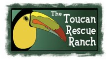 Toucan Rescue Ranch, Costa Rica