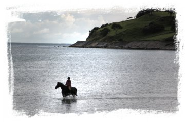 Sea bathing, horse and rider on the Great Coast Road, Northern Ireland ©vcsinden2013