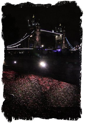 Poppies overlooked by Tower bridge, floodlit at the Tower of London ©vcsinden2014