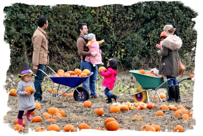 Family pumpkin picking at Pumpkin Moon ©vcsinden2016
