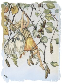 Birch Fairy by Cicely Mary Barker