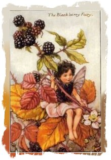Cecily Mary Barker - the Blackberry Fairy
