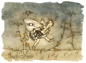 Fairy with blackberries, Arthur Rackham - from 'A Midsummer Night's Dream'