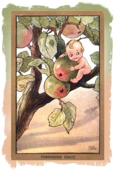 H.C.Marsh Postcard of apple fairy