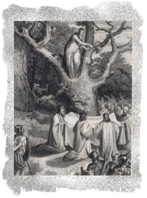 The Druids bringing in the Mistletoe