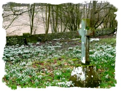 Challock, Kent, UK - the churchyard at Snowdrop time - on the website of the eco fairy Muddypond Green