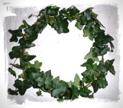 ivy ring - base for a dragon winter crown made by a fairy
