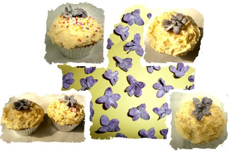 Cup cakes - hedgerow sugared violets from Eco enchantments