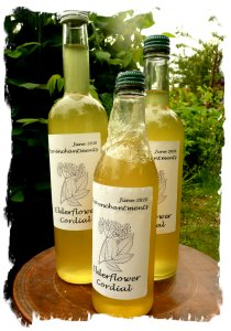 Elderflower cordial - made by Muddypond Green for Eco-enchantments