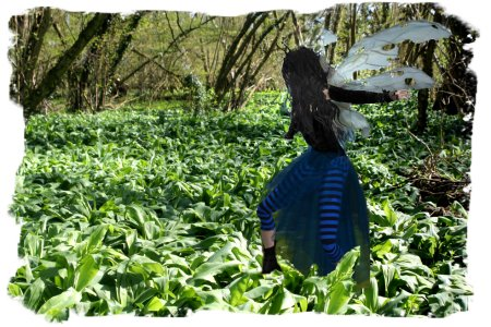 Faery Muddypond Green in the wild garlic at The Alder Beds, Charing,