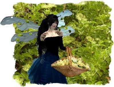 Faery Muddypond Green with a basket full of elder flowers