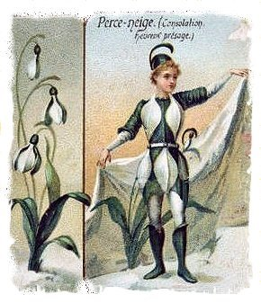 Snowdrop Boy on French Advertising Card