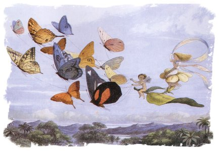 Richard Doyle 'In Fairyland' The Butterflies