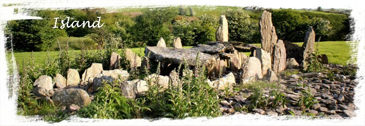 Island Wedge Tomb, Cork, Ireland ©vcsinden2011